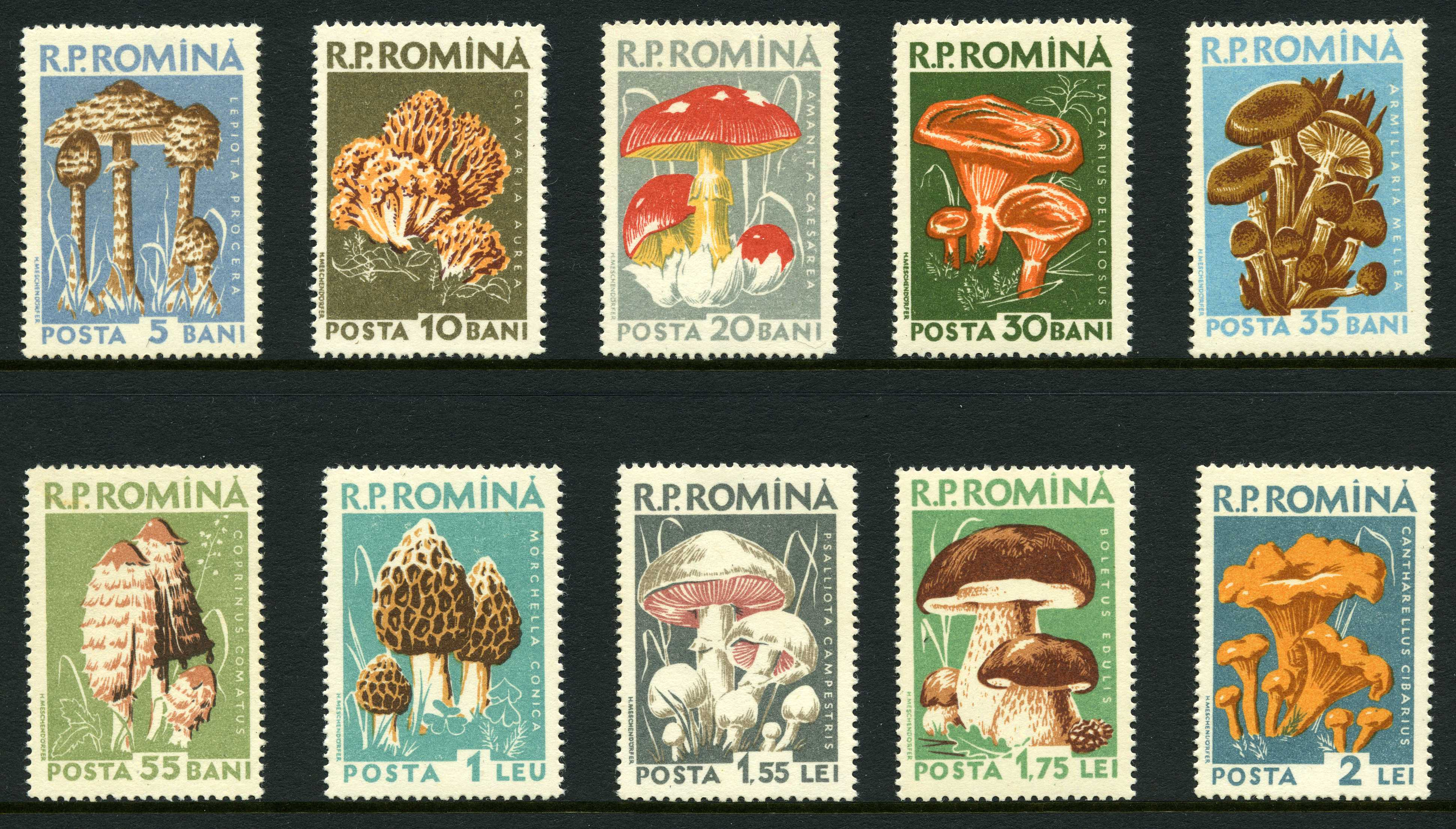 fungi on stamps introduction and references
